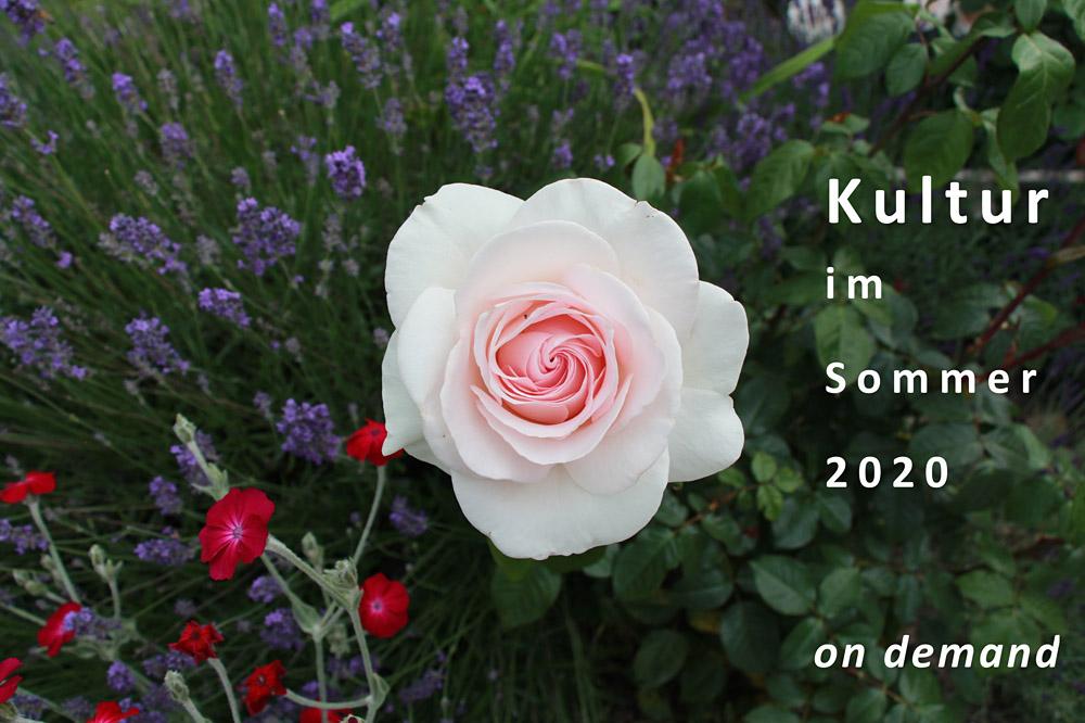 Kultur im Sommer 2020 – alle Beiträge